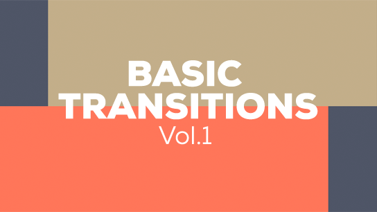 Vector basic transitions
